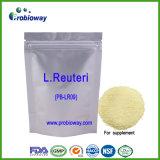 Lactobacille Reuteri 200b de matière première de poudre de Probiotics