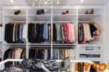 DIY moderner Entwurfs-hoher glatter Lack-hölzerne Garderobe (BY-W-106)
