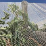 Obstbaum-Antihagel-Netz von der Anping-Fabrik