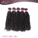 Человеческие волосы Китай Mogolian цены по прейскуранту завода-изготовителя Kinky курчавые оптовые