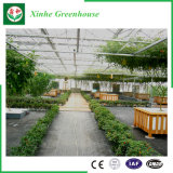 Van de bloem/van het Fruit/het Groeien van Groenten de Serre van het PC- Blad met het Systeem van het Zonnescherm