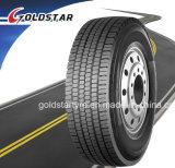 Neumático doble 315/80r22.5, 13r22.5, 12r22.5 del omnibus de la calidad TBR de la moneda