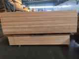 Classe da parte superior da colagem E0/E1 e fabricante da madeira compensada do vidoeiro da alta qualidade para a mobília do mundo