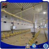 養鶏場のための軽いタイプ前設計された物質的な構築