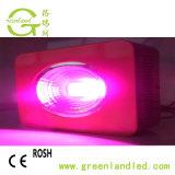Full Spectrum 300W LED SABUGO crescer Lâmpada para emissões e interior do florescimento das plantas crescendo