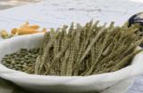 Pâtes de soja biologique