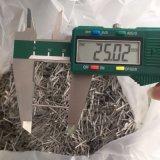 En acier inoxydable sans soudure à paroi mince tube capillaire tuyau SS 304