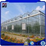 Multi-Überspannung Garten-Stahlkonstruktion-Gewächshaus für Gemüse