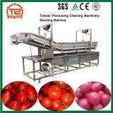 クリーニングの機械装置の輸入価格のトマトの洗濯機を処理するトマト