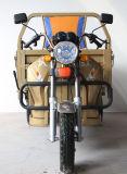 Взрослый трицикл /Motorized трицикла Passenager