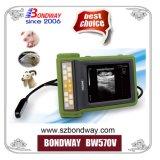 Scanner de ultra-som portátil para veterinários, Sistema de imagem de ultra-sons de Veterinária, Reproscan, Bcf transdutor de ultra-sonografia, Máquina de leitura