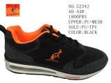 De zwarte Vlieg van de Kleur breit de Schoenen van de Sport
