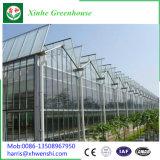 Goot van het Glas van Polytunnel van Venlo verbond de UV Behandelde Tropische Serre