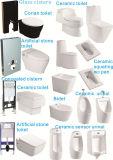 Туалет и биде, Squating Urinal, Wc доски