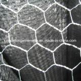Casella di Gabion/maglia di Gabion/rete metallica esagonale/Gabion