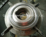 Muffa cinese certa del tubo del fornitore 14X54mm della muffa del tubo