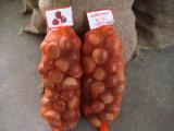 Châtaigne fraîche des tailles importantes 60-80 Dandong