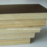 Film Faced Plywood WBP Glue Poplar core Construction