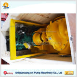 Landwirtschaftliche Dieselbewässerung-aufgeteilte Gehäuse-Pumpe