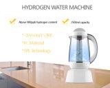 FDA를 가진 휴대용 홈 Spe 기술 H2 물 제작자 수소 물 투수 기계