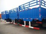 Camion resistente del camion del camion 20t del contenitore di carico di Sinotruk 6X4