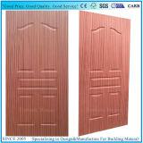 Piel moldeada el panel de madera de la puerta de la madera contrachapada de la chapa 5 de EV Sapeli