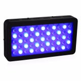 Hydroponic LED Grow Light for Indoor