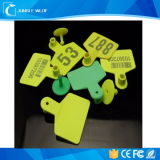 Tag animal esperto popular da freqüência ultraelevada RFID do Lf para seguir