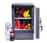 Elektronische MiniKoelkast 15liter, DC12V AC100-240V in zowel het Koelen als het Verwarmen voor Auto, Huis, het Gebruik van het Bureau