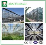 Invernadero galvanizado del vidrio del túnel de la estructura de acero