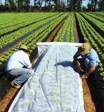 PPの回担保付きの紫外線抵抗力がある穀物カバー