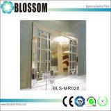 Miroir découpé décoratif de mur luxueux avec le bâti de forces de défense principale