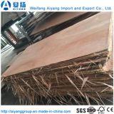 El alto grado de Sapelli Okoume Bintangor//Comercial para el embalaje de muebles de madera contrachapada/
