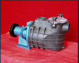 ISO9001 입증 Bttp AC 수도 펌프의 고품질