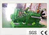 De nieuwe Reeks van de Generator van het Steenkolengas van de Energie/Van het Gas van de Producent (30KW)