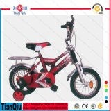자전거 소녀와 소년 아이들의 자전거가 Kinderfahrrad 새 모델에 의하여 농담을 한다