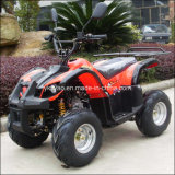 Cheap ATV 50 cc