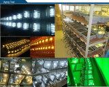 Luz de inundación de la MAZORCA LED del certificado PF>0.9 de Ce/RoHS/SAA 100W
