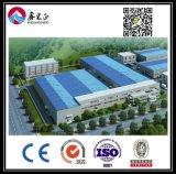 Entrepôt personnalisé par qualité de structure métallique (BYSS032)