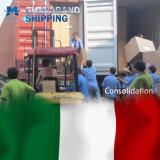 De concurrerende Overzeese Vracht van de Oceaan & van China aan Italië/Rome/Genua/Venetië/Milaan