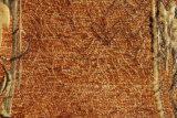 Tissus de jacquard tissés par Chenille (FTH31077)