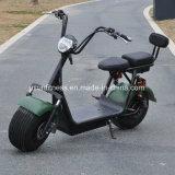 1500W脂肪質の車輪のタイヤUsun Harley Citycoco E セリウムが付いているスクーター