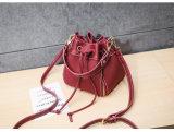 De uitstekende MiniZak van de Schouder van de Zak van de Vrouwen van de Handtassen van de Zwerfster van de Emmer (WDL0992)