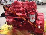 Motor diesel de Dongfeng Cummins para la máquina del carro pesado (B3.9)