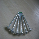 Shank Umbrella Head Roofing Nails 꼬이는 Smooth