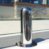 Heißer Verkaufs-Edelstahl-Swimmingpool-Zapfen mit Frameless Glasgeländer