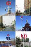 Chinesischer kleiner vertikaler Wind Genrator der Mittellinien-300W für Haus