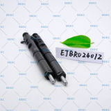 Пьезоэлектрическая форсунка Ejbr Erikc z02401Ejb форсунок Delphi R Z02401Ejbr Ejbr форсунки0 2401z с общей топливораспределительной рампой Delphi форсунок для KIA