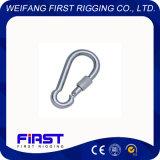 Crochet instantané/avec la vis DIN5299/Form D/Electric galvanisant/acier inoxydable AISI 304&316