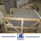 G664 bancadas de granito Grnite Título/bancadas de granito chinês